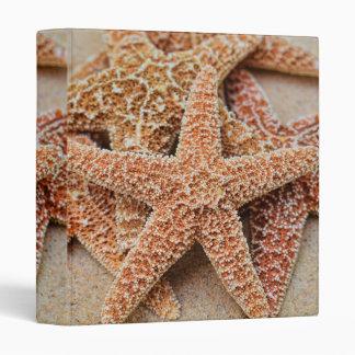 "A Pile of Large Sugar Starfish 1"" Photo Album Binder"