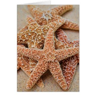 A Pile of Large Sugar Starfish Card