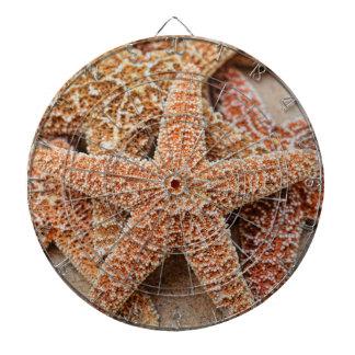 A Pile of Large Sugar Starfish Dart Boards