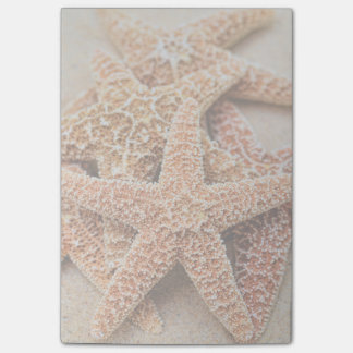 A Pile of Large Sugar Starfish Post-it Notes