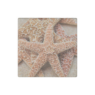 A Pile of Large Sugar Starfish Stone Magnet
