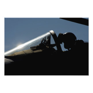 A pilot prepares for take-off photo print