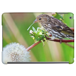 A Pine Siskin (Carduelis Pinus) pecks seeds from Cover For iPad Air