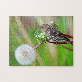 A Pine Siskin (Carduelis Pinus) pecks seeds from Jigsaw Puzzle