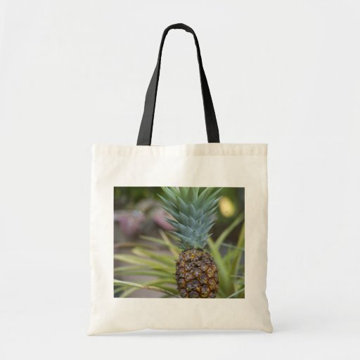 A Pineapple Canvas Bag