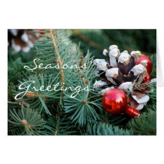 A Pinecone Season Cards