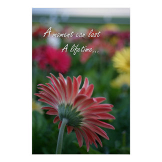 A Pink Gerbera Daisy flower quote Poster