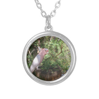 A Pink Major Mitchell's cockatoo on a barrel Round Pendant Necklace