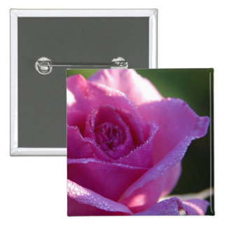 A pink rose 2 inch square button