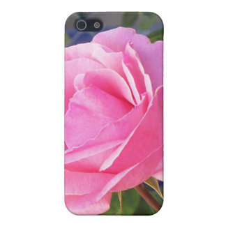 A Pink Rose Cover For iPhone SE/5/5s