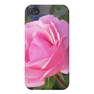A Pink Rose iPhone 4 Covers