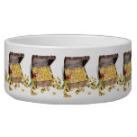 A Pirates Treasure Chest (Add Background Color) Dog Food Bowl