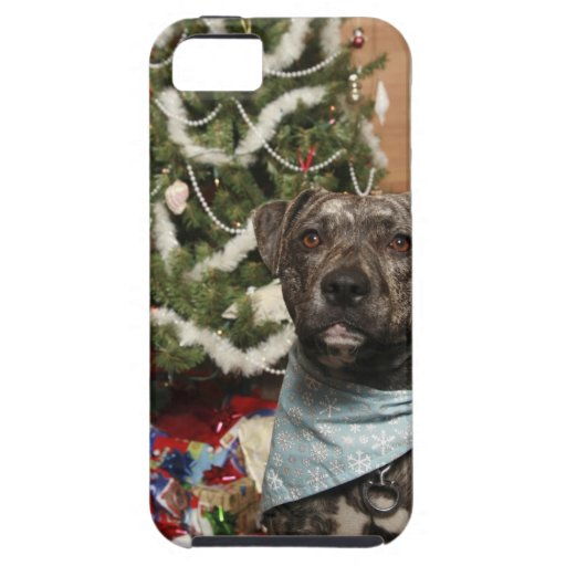 A pit bull posing for a Christmas portrait. iPhone 5 Covers