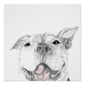 A Pit Bull Smile Poster