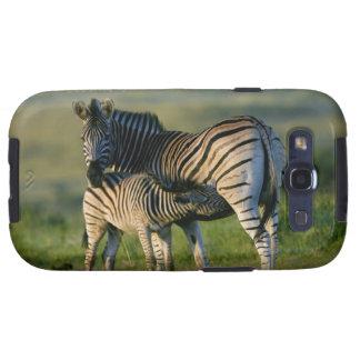 A Plains Zebra feeding her foal, Kwazulu-Natal Samsung Galaxy SIII Case
