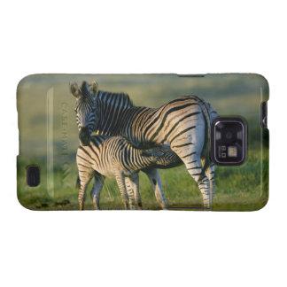 A Plains Zebra feeding her foal, Kwazulu-Natal Galaxy SII Cases