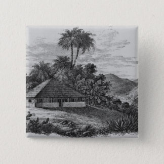 A Planter's House in Brazil Button