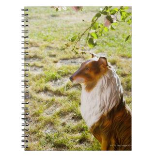 A plastic dog in a garden. notebook