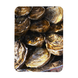 A plate of oysters. rectangular photo magnet