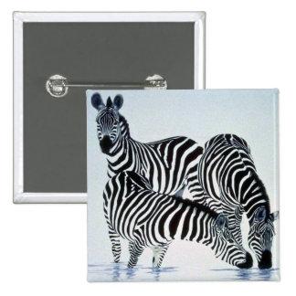 A play on stripes, Zebras Button