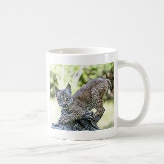 A Playful Canadian Lynx Kitten Coffee Mug