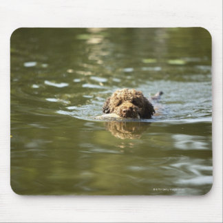 A playful dog cools off in the summer heat. mouse pad