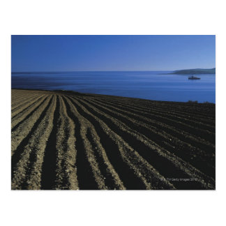 a ploughed field near the sea postcard