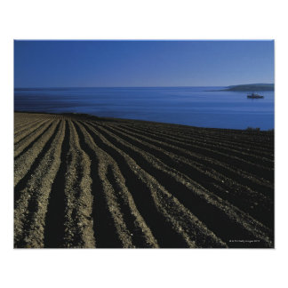 a ploughed field near the sea poster
