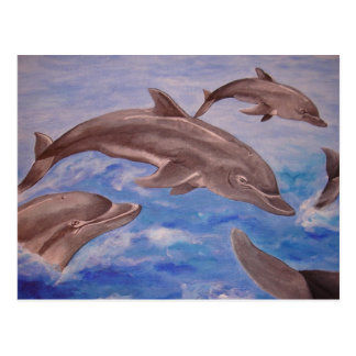 A Pod of Playful Jumping Dolphins Postcard
