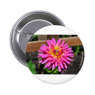 A Poignant Love Story Pinback Button