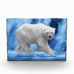 A polar Bear at the frozen waterfall Award