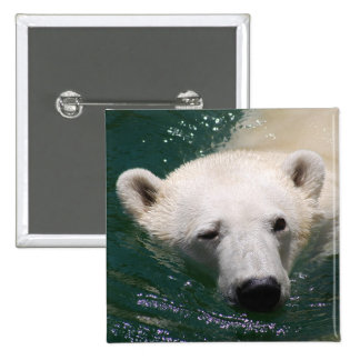 A polar bear just chilling buttons