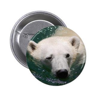 A polar bear just chilling pins