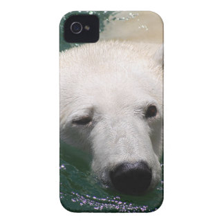 A polar bear just chilling Case-Mate iPhone 4 case