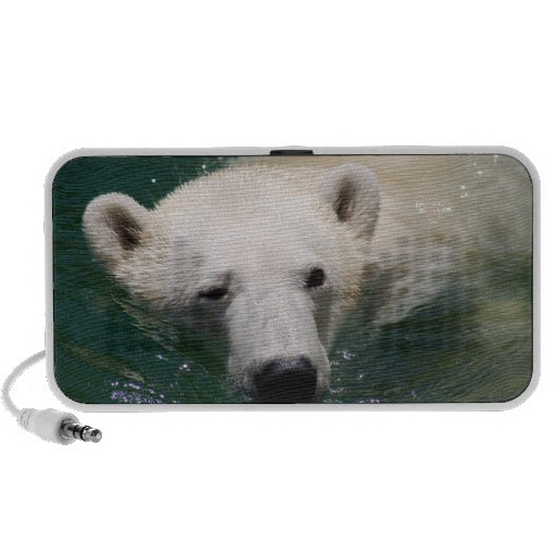 A polar bear just chilling laptop speakers