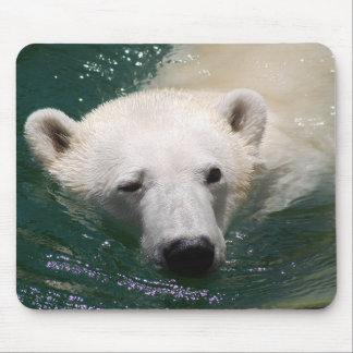 A polar bear just chilling mouse pad