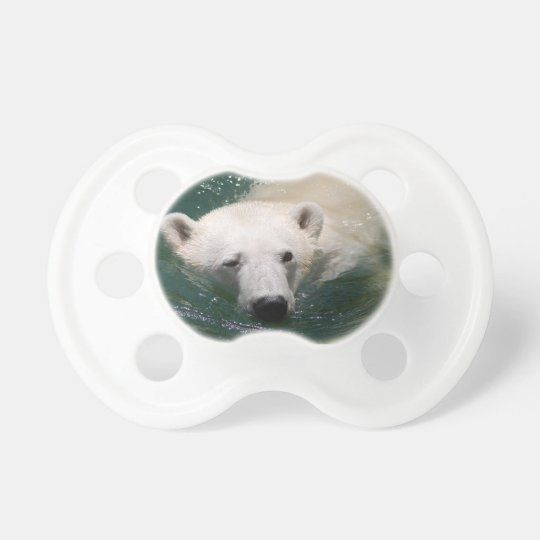 A polar bear just chilling pacifier