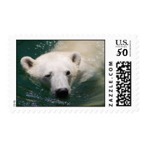 A polar bear just chilling postage
