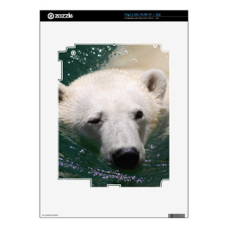 A polar bear just chilling skins for iPad 2