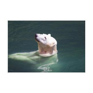 A polar bear resting canvas print