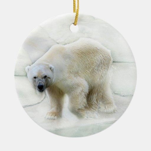 A polar bears icy cold ceramic ornament