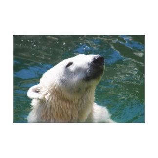 A polar bears smile canvas print