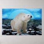 A polar bears time poster