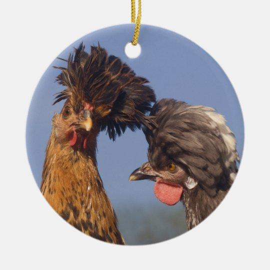 A Polish Chicken Christmas Ceramic Ornament