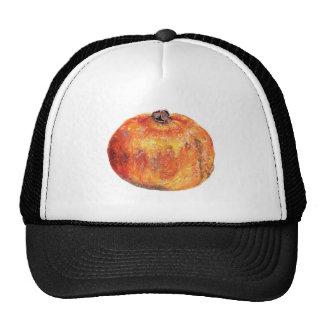 A popegranite trucker hat