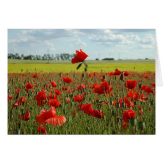 A Poppy Above the Rest Stationery Note Card