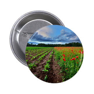 A Poppy Field And A Beta Field In Latvia Button