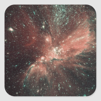A population of infant stars in the Milky Way Square Sticker