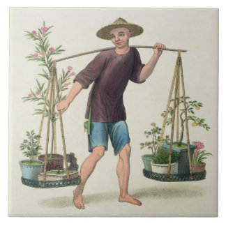 A Porter with Fruit Trees and Flowers, plate 16 fr Tile