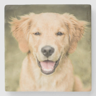 A Portrait Of A Golden Retriever Puppy Stone Coaster